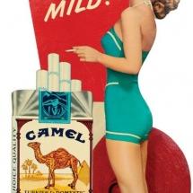Camel cool mild