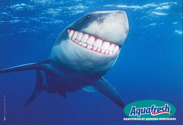 Aquafresh - Humour