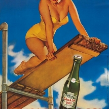 pin-up canada dry