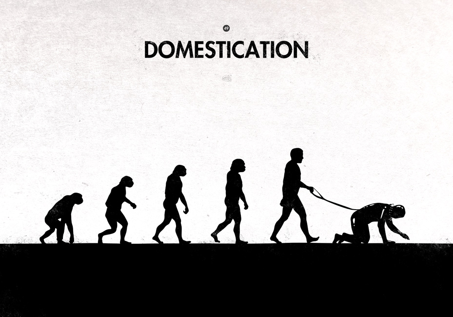 evolution_domestication
