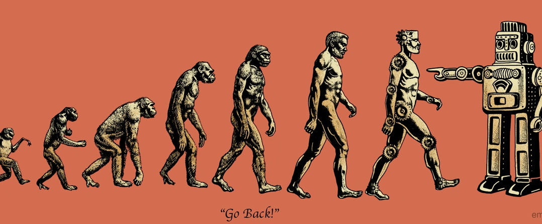 evolution_emek.net