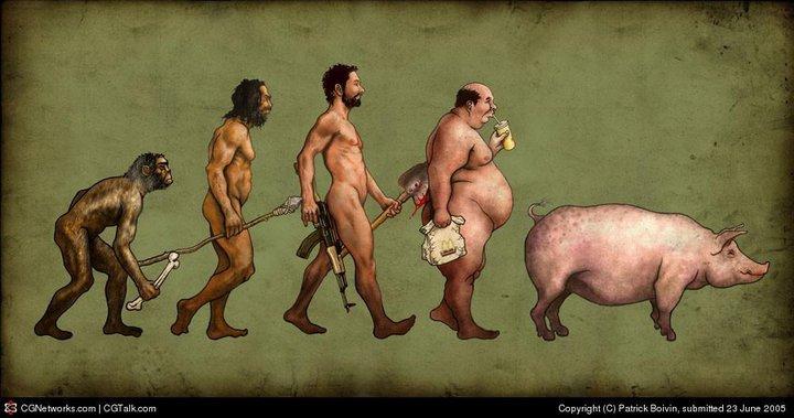 evolution_homme_porc