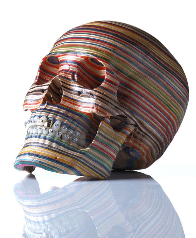 Haroshi - Crâne