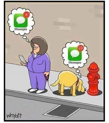 Messages - Humour Whyatt