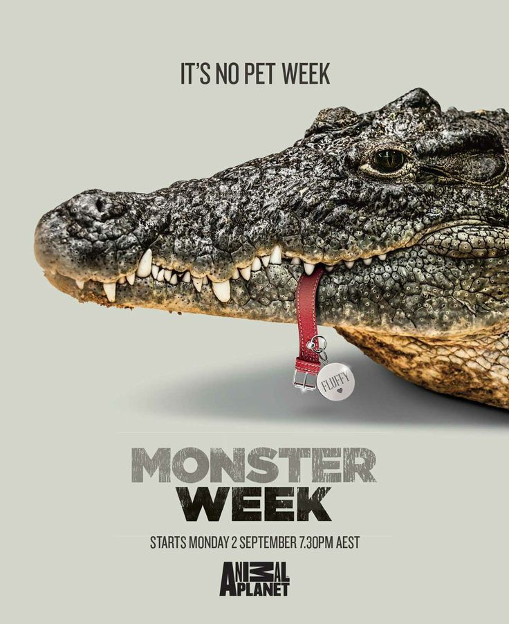 monster_week