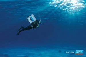 Neptuno hyperbole