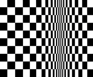Bridget Riley - Movement in sqare - 1961