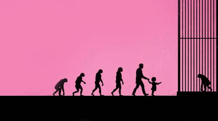 schema_evolution_singe_zoo