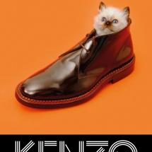 toilet_p_kenzo_cat