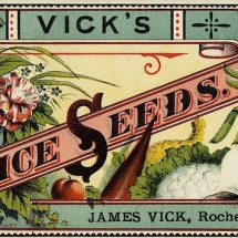 Vick's Choice Seeds