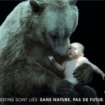 Jean-Marie Vives - Fondation Nicolas Hulot
